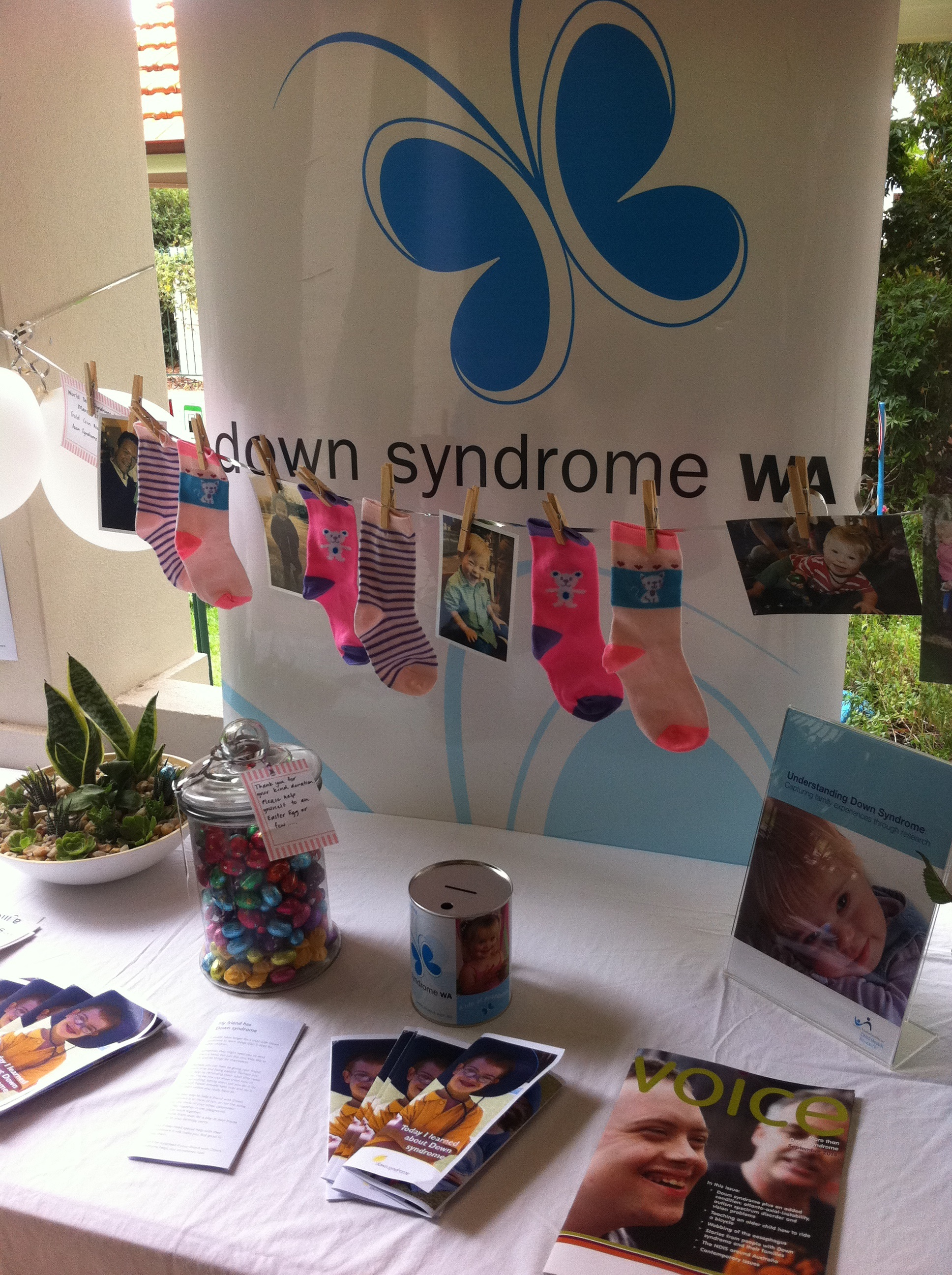 down syndrome display 2015
