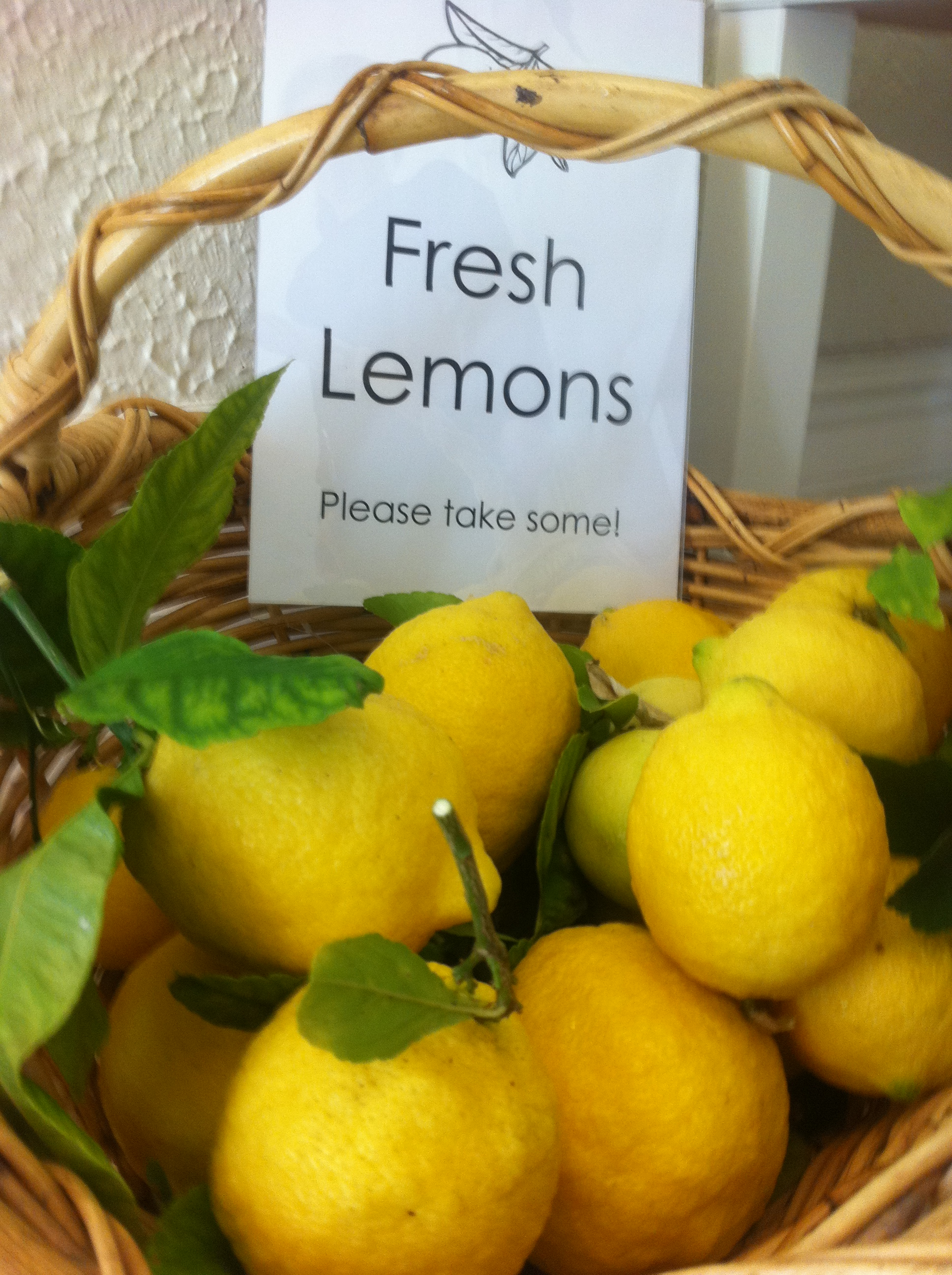 fresh lemons Dalkeith ELC