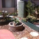raised garden bush tucker